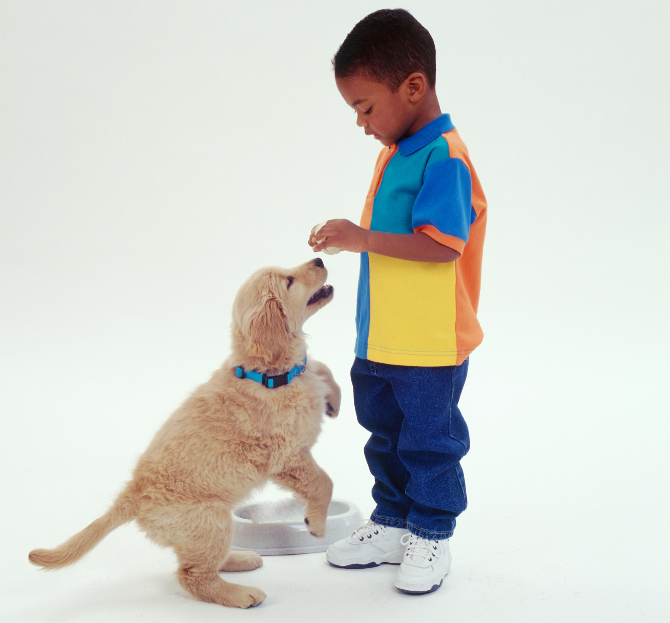 boy & dog-0003a