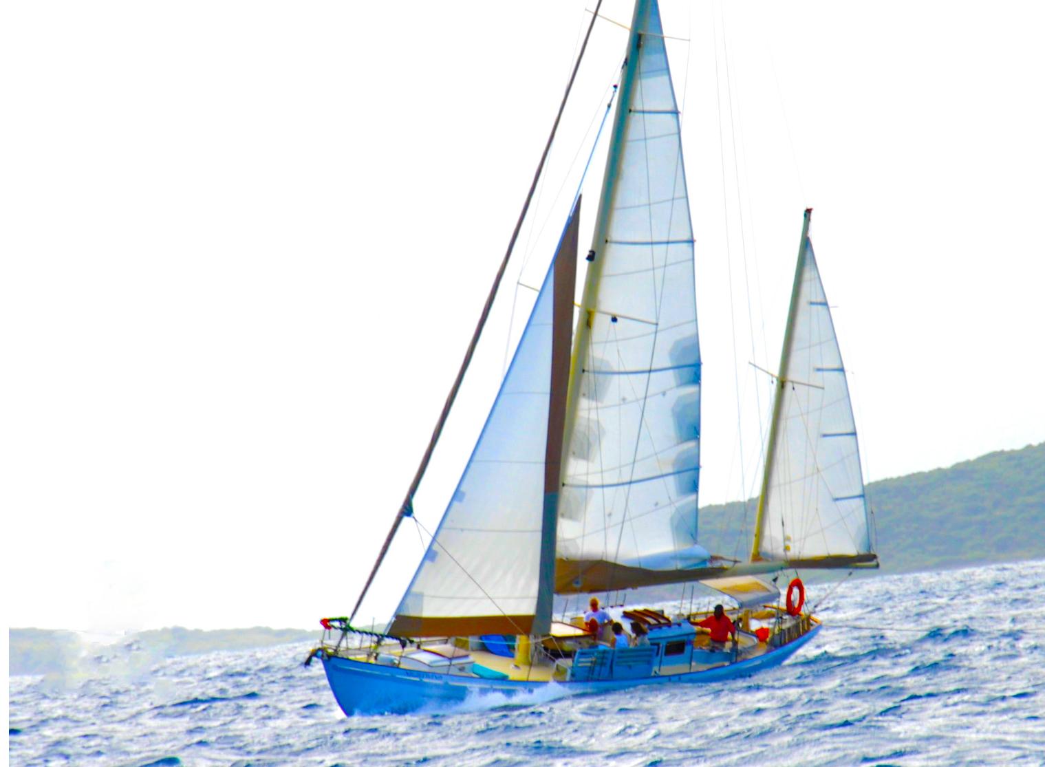 sail copy2