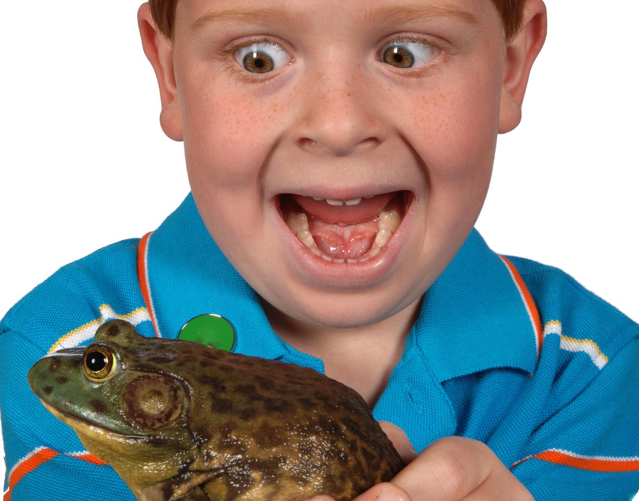 frog_jpegb